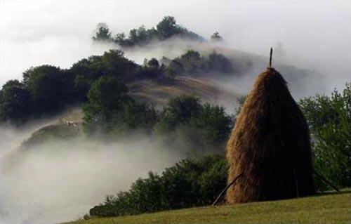 Fagaras County